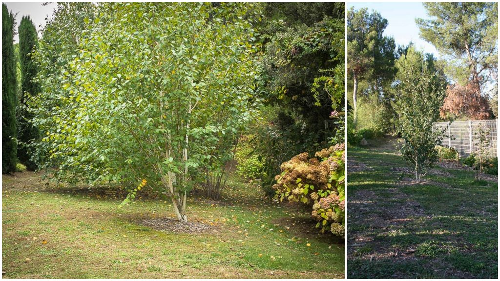 Gauche 2018 automne - Droite 2012