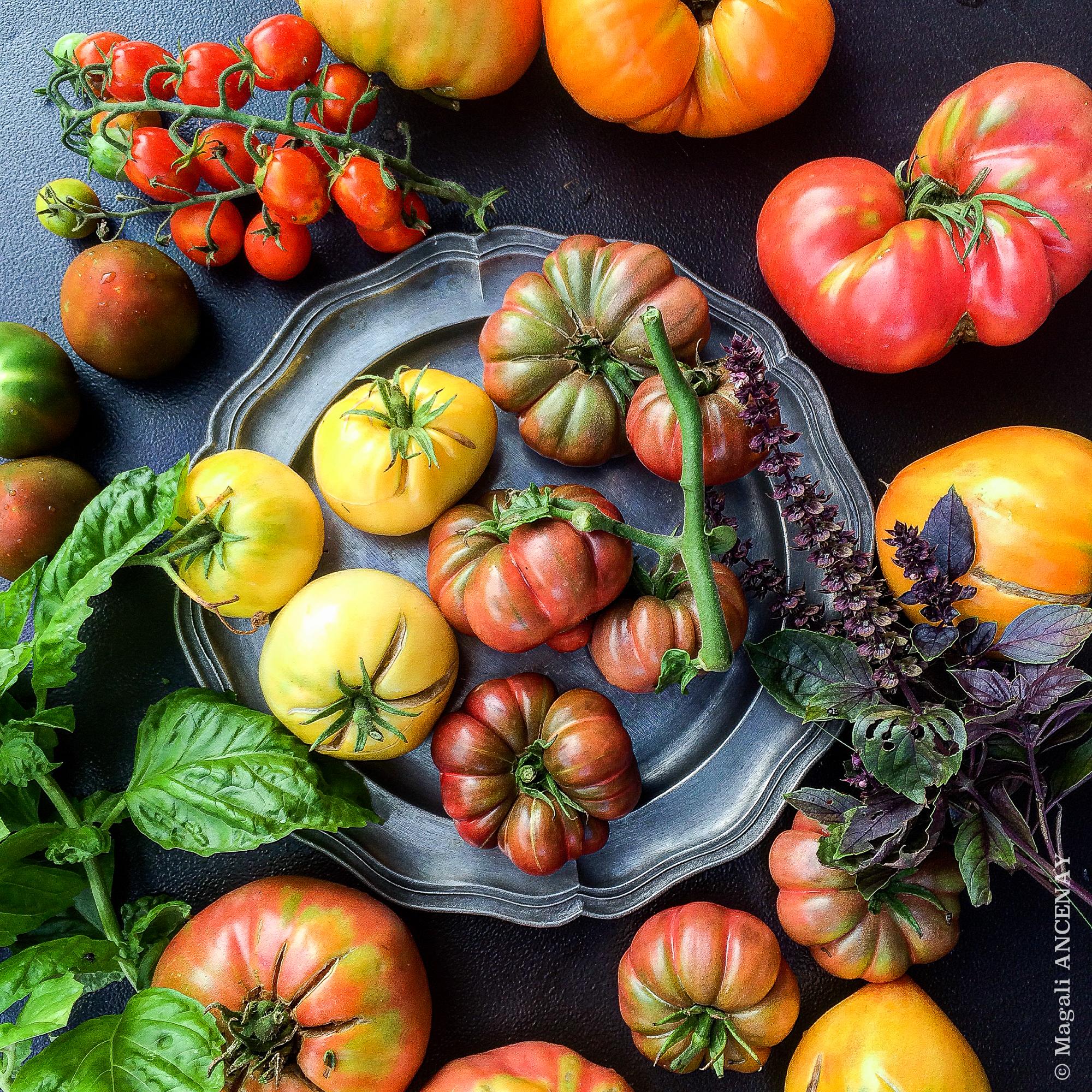 Tomates anciennes au potager quatre saisons au jardin - Comment congeler des tomates du jardin ...