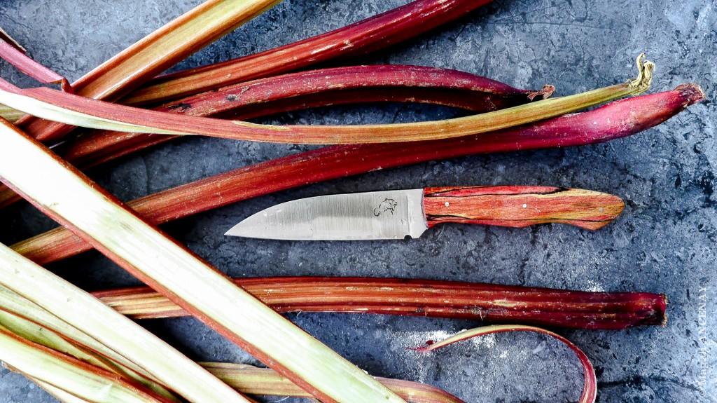 Rheum Raphonticum - Polygonacées, Couteau de Gaëtan Cesteleyn (La Coutellerie du Vieux Chêne)
