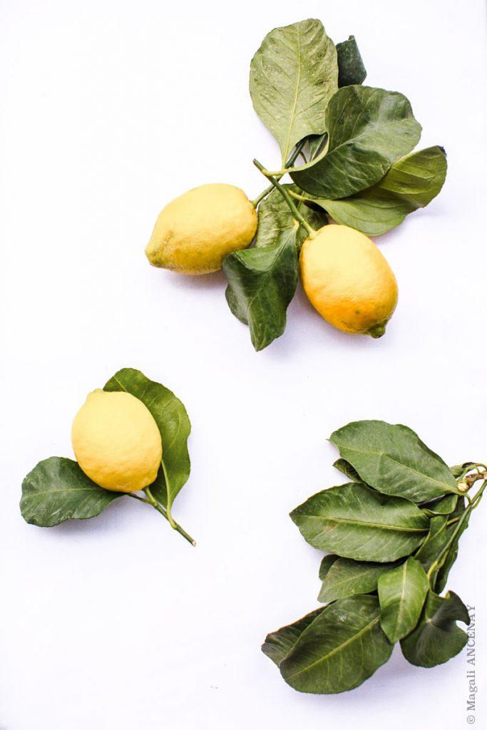 Fiadone au citron - Quatre saison au jardin