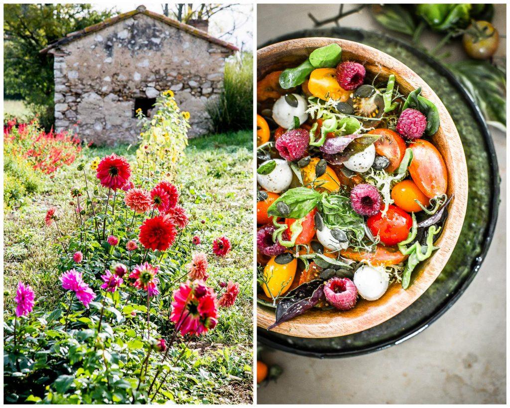 fleurs comestibles de la graine à l'assiette - Magali ANCENAY Photographe Culinaire