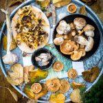 Polenta crémeuse et champignons - Magali ANCENAY Photographe Culinai