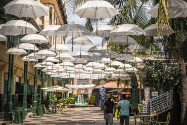 Le marché de Port-Louis Part II